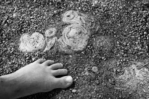 alte Wurzel - junger Fuß