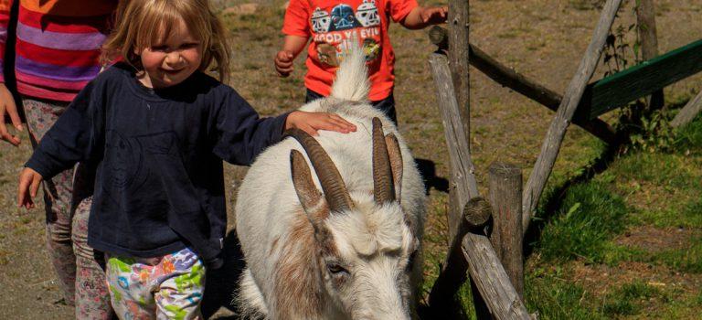 Ausflugstipp mit Kindern in Värmland – Schweden